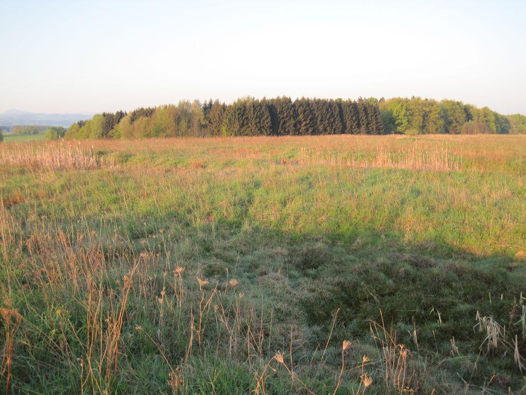 Voeltendorf2